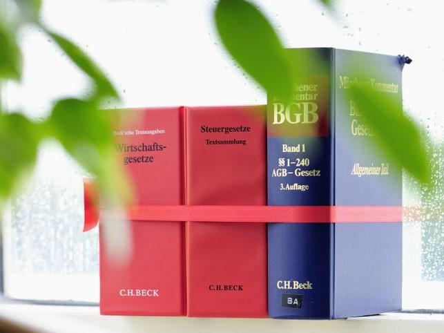 ECOVIS ježek Novelle des Handelskorporationsgesetzes Tschechien 2020